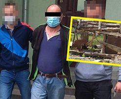 Agresywne psy pogryzły 10-letniego chłopca. Właściciel był pijany