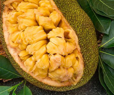 Chlebowiec to największy owoc na świecie