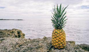 Ananas najpopularniejszy był w latach 70. XX wieku