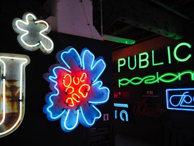 W stałej kolekcji muzeum znajduje się ok. 100 starych neonów i innych instalacji reklamowych.