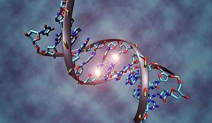 #dziejesiewtechnologii [71]: Modyfikacje genetyczne, Google operatorem i niezwykła winda WTC