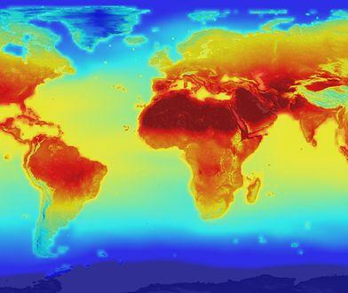 Lipiec 2019 roku był prawdopodobnie najcieplejszym miesiącem w historii.