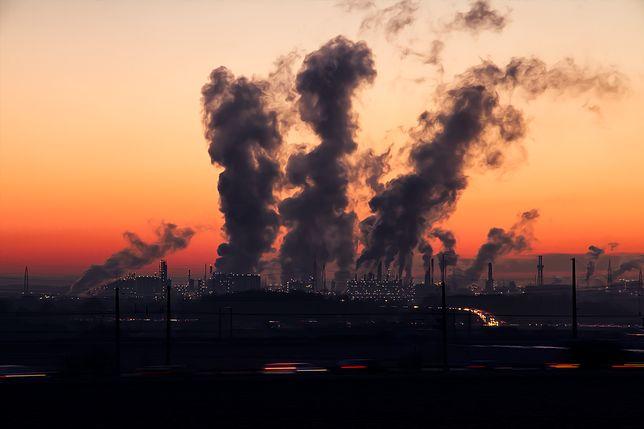 To nie fabryki, a niska emisja jest główną przyczyną smogu
