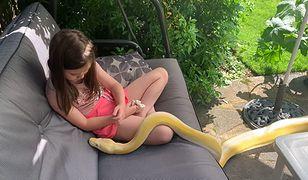 Dziewczynka traktuje węże jak rodzinę (YouTube)