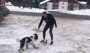 Donald Tusk bawi się z psem Portosem