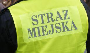 Pedofil zaczepiał dzieci nad Wartą w Poznaniu
