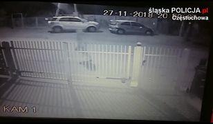 Zboczeniec atakuje kobiety w Częstochowie. Apel śląskiej policji