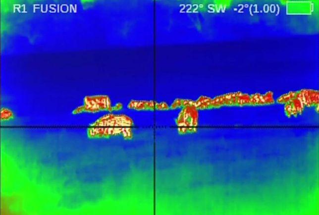 Do polowań na dziki zostaną użyte drony i termowizja.