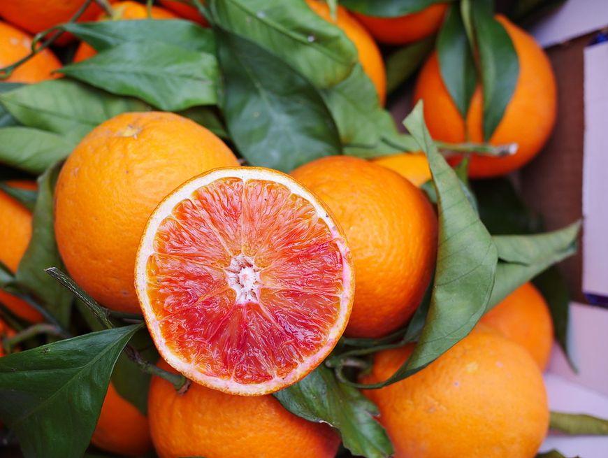 Kuzynka pomarańczy
