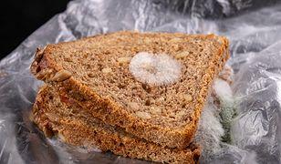 Co się dzieje z chlebem, który dotkniesz brudną ręką? Efekty są szokujące