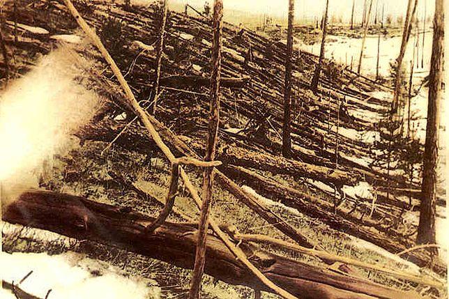 109. rocznica katastrofy tunguskiej. Coraz więcej pytań, coraz mniej odpowiedzi
