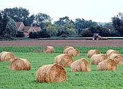 Walka o zdrowie rolników i kieszeń podatnika