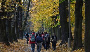 Bon turystyczny 500 plus. Polacy chcą podróżować, ale narzekają na trudności