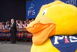 Posłanka PiS stawia rząd pod ścianą. Pyta o spełnienie obietnicy wyborczej, która padła na partyjnym pikniku z rodzinami