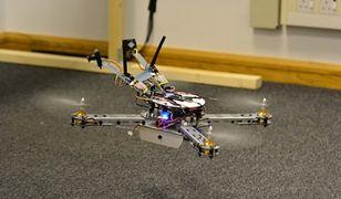 Naukowcy stworzyli drona z mózgiem pszczoły