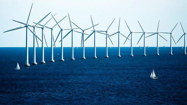 Wielkie morskie farmy wiatrowe