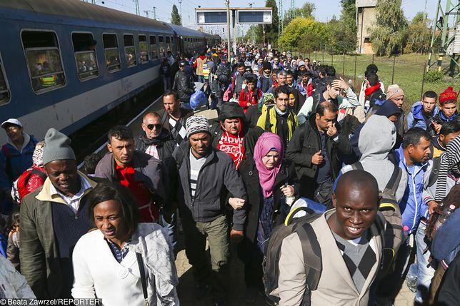 Nowa koncepcja KE ws. imigrantów. Państwa członkowskie pozostają sceptyczne