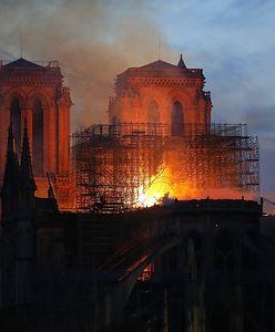 Katedra Notre Dame. Jak tajemniczy grecki napis ocalił zabytek