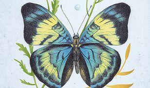 Kalendarz 2021. Motyle