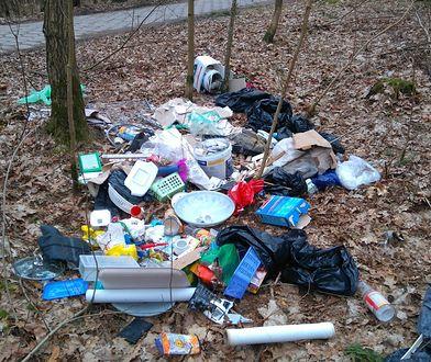 Wyrzuciła do lasu śmieci wraz z polisą ubezpieczeniową