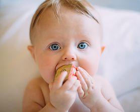 Które produkty podawać jako pierwsze? Poradnik rozszerzania diety niemowlaka
