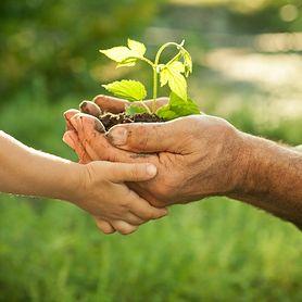 Mity o ekologii, w które wierzysz, a nie powinieneś