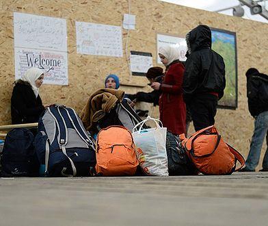 Uchodźcy wykorzystywani w Niemczech jako nielegalna siła robocza
