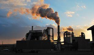 Raport WHO. Zanieczyszczenie środowiska przyczyną przedwczesnych zgonów