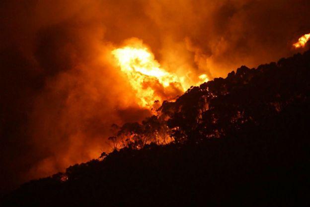 Australijczycy walczą z pożarem buszu. Ogień strawił już ponad 100 domów