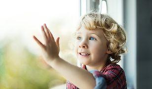 Jak dobre okna mogą wpłynąć na poprawę bezpieczeństwa domu?