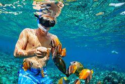 Snorkeling - jak zacząć? Wybieramy sprzęt do snurkowania