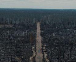 Apokaliptyczne sceny z Czarnobyla. Pokazali zdjęcia po pożarze w Zamkniętej Strefie