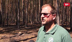 """Pożary lasu w Potrzebowicach. """"Pięć z nich zostało spowodowane celowym podpaleniem"""""""