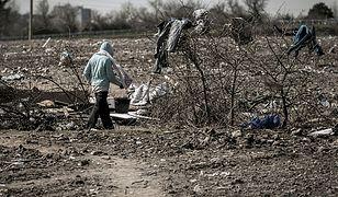 Imigranci wracają do Calais