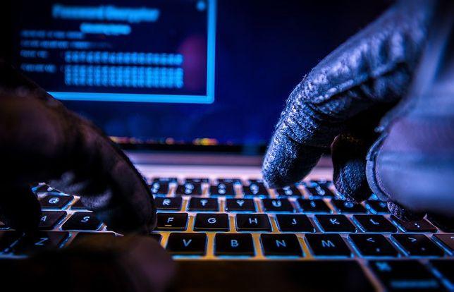 Chciał wyłudzić 3,5 mln zł. CBŚP zatrzymało hakera