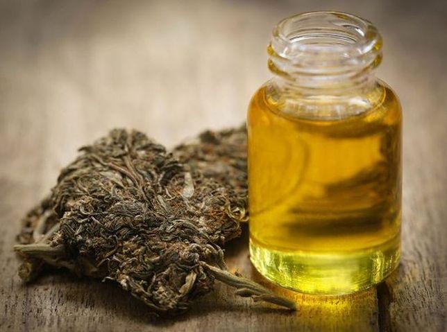 Co dalej z medyczną marihuaną? W niedzielę protest pod Sejmem