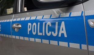"""Bielsko-Biała. Policyjni poszukiwacze """"mieli nosa"""". Za kierownicą poszukiwany listami gończymi"""