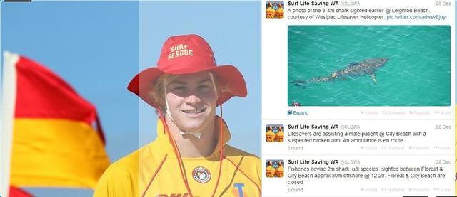 Rekiny korzystają z Twittera