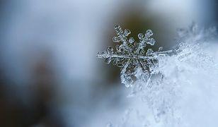 Prognoza pogody zima 2021. Doczekamy się śnieżnej zimy?