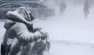 """Pogoda długoterminowa. """"Bestia ze wschodu"""" nie tak straszna?"""