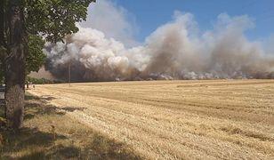 Komorniki. Wielki pożar, kłęby dymu nad Wielkopolską