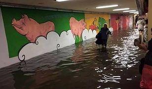 Ulewa w stolicy to zalane przejścia podziemne, ulice i chodniki. Kto za to odpowiada?