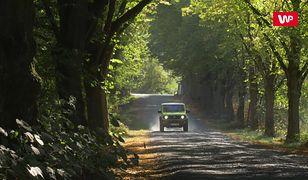 Jeździłem nowym Suzuki Jimny. To ciągle terenówka, którą pokochały miliony