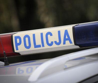 Warszawa. 16-latka brutalnie zamordowana i zakopana w lesie. Areszt dla sprawcy