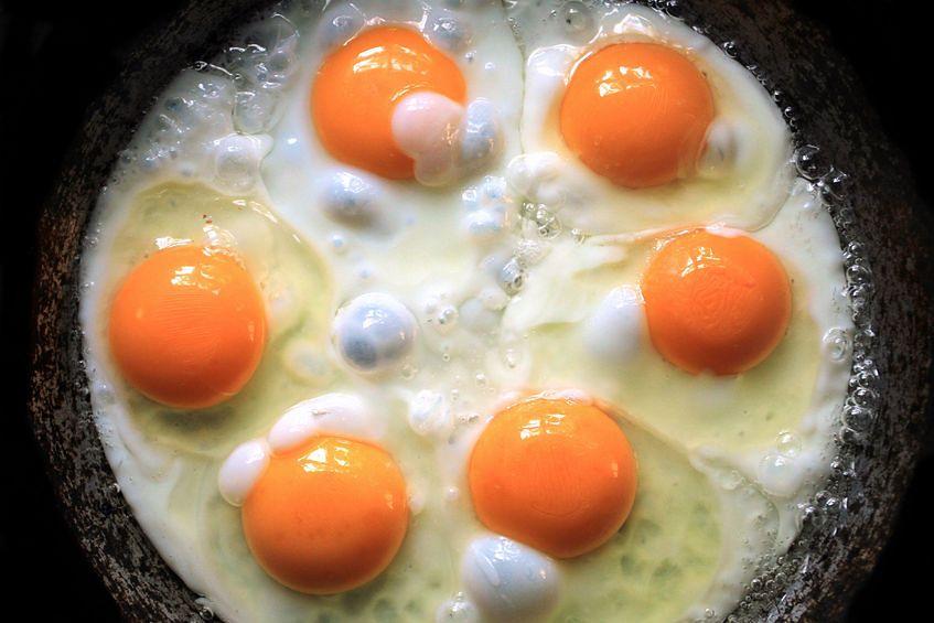 Które jaja wybrać?