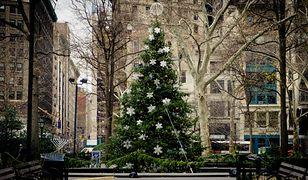 Najczęstszym symbolem Bożego Narodzenia uzupełniającym życzenia świąteczne jest choinka