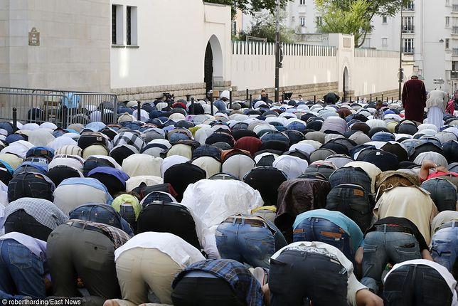 Włoska kuria odda działkę pod budowę meczetu