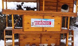 Sosnowiec. Kotom nie będzie już zimno. W bazie Remondisu stanęły dla nich specjalne domki