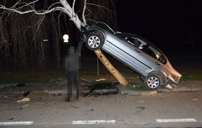 Kierowca i pasażerowie bmw mieli szczęście. Zderzenia z drzewem często mają tragiczny finał