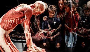 Lekcja anatomii czy bezczeszczenie zwłok? Kontrowersyjna wystawa znów w Polsce